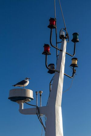 Detail of the mainmast with various colorful lights for signalization. Seagull standing. Bright clear blue sky. Essaouira, Morocco. Archivio Fotografico