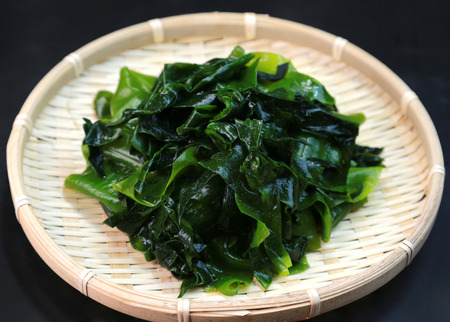 Wakame seaweed  Japanese food