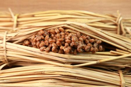 Japanese food  natto 版權商用圖片
