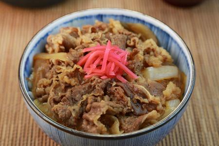 beef bowl  japanese food