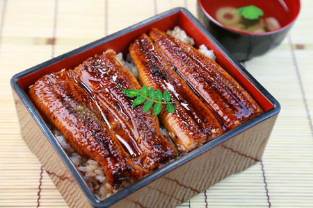 lacquered: Japanese food, Unajyu, Eel and rice in a lacquered box