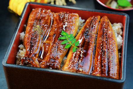 eel: Japanese food, Unajyu, Eel and rice in a lacquered box