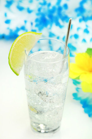tonic: gin and tonic Stock Photo