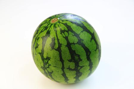 Watermelon 写真素材