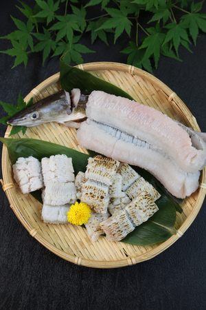 This is called yubiki hamo (parboiled conger pike) or botan hamo (peony-shaped conger pike). Zdjęcie Seryjne