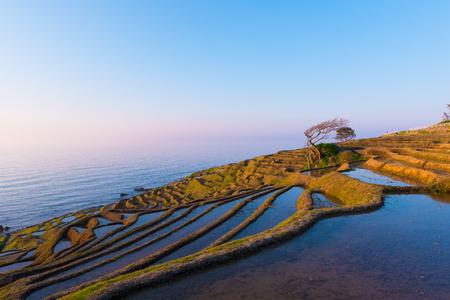 Shiroyone Senmaida, les mille champs de riz à Noto, Ishikawa, Japon Banque d'images - 77169281