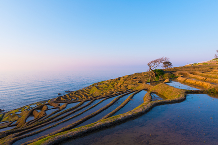 Shiroyone Senmaida, The One Thousand Rice Fields in Noto, Ishikawa, Japan