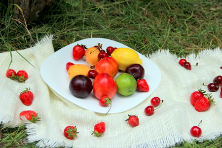clear day: picnic on a clear day fruit pleasure