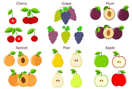 apricots: Colorful fruits set - apples, cherries, pears, grapes, apricots, plums