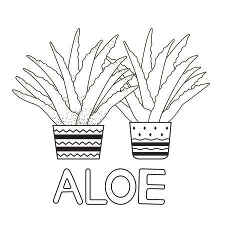 Aloe vera. Coloring page. Vector illustration