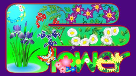 I designed Japanese flower patterns.