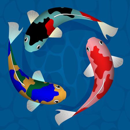 Illustration of a fish carp