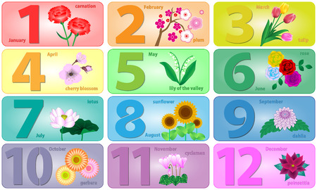 12 month birth flowers