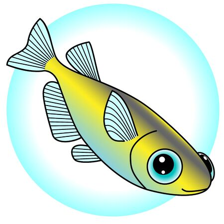 A pretty killifish is the illustration which is being swum.
