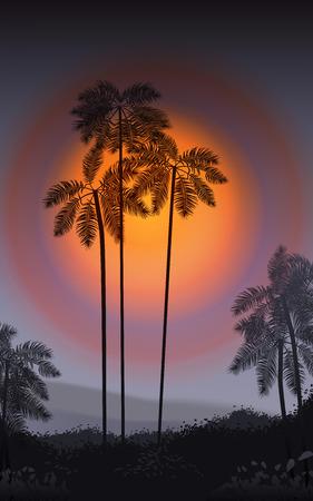 the season of romance: Summer Night. Palm trees in the night. Vector illustration. EPS 10