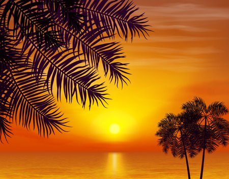 Summer night. Palm trees on the background of sunset. Vector illustration.