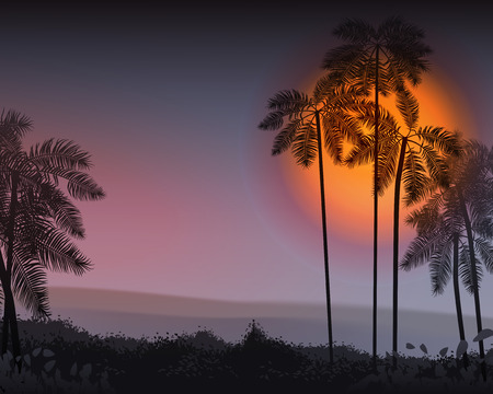 romantic getaway: Summer Night. Palm trees in the night. Vector illustration. EPS 10