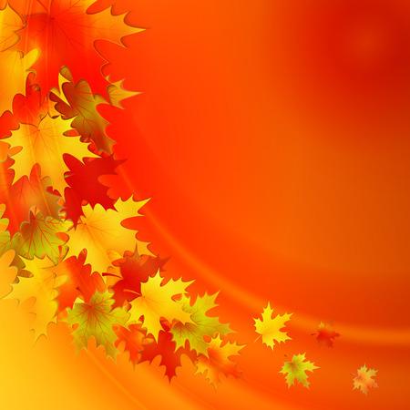 sfondo natura: Sfondo autunno con le foglie. Vector sfondo della natura. EPS 10