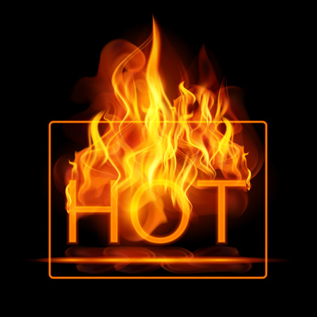 flames vector: Abstract fire flames vector background. Illustration Hot Fire with glowing text in flames. EPS 10