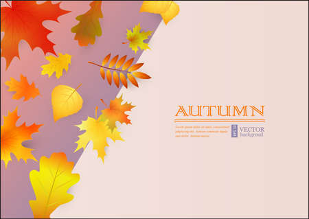Autumn background with colorful leaves. Vectores