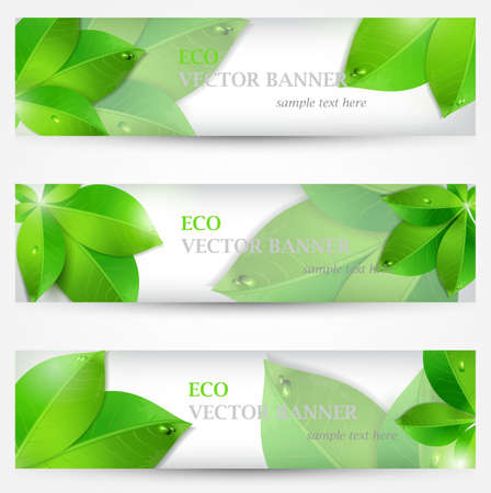 Set banner ecology illustration, colorful composition with green leaves