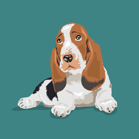 beagle dog at blue background Illustration