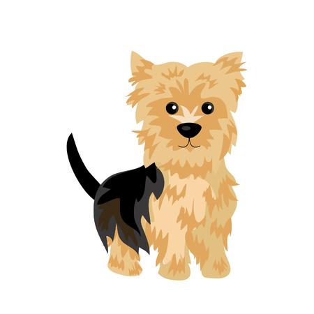 ヨークシャー ・ テリア犬  イラスト・ベクター素材