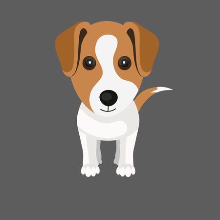 Jack Russell Terrier dog Ilustração