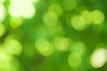 blurred spring natural background in green colors Stock Photo