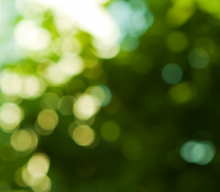 background in green colors, the blurred effect