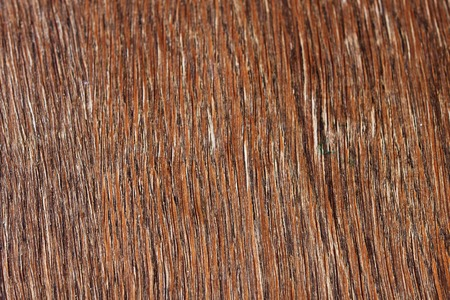 untreated: brown untreated wooden board, abstract background for design