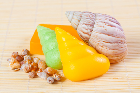 handmade soaps in the shape of shells and sea shells