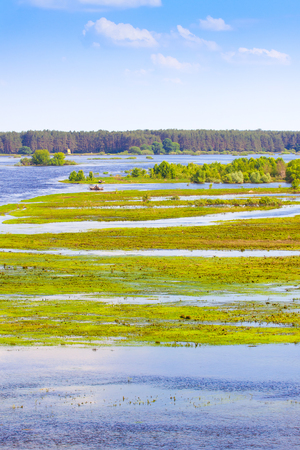 Late spring, river flooding on the meadow Stock Photo