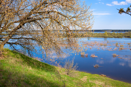 flood area: View from a hill on a meadow filled with melt water Stock Photo