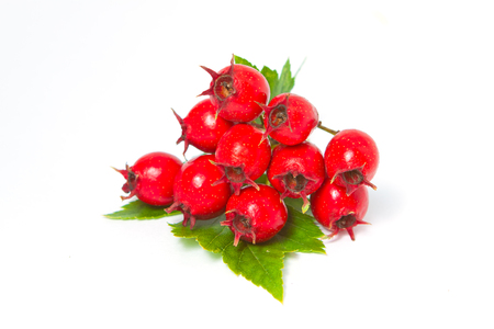 Red hawthorn berries with leaves on white background, close-up Stock Photo