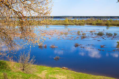 flood area: View from a hill on a meadow filled with melt water, spring day