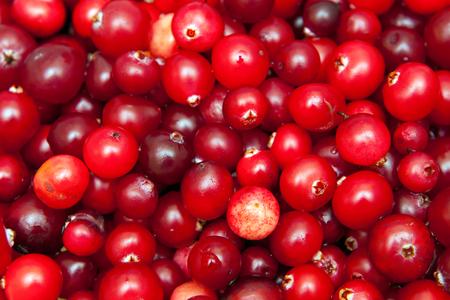 background image of ripe red cranberries, vegetarian food