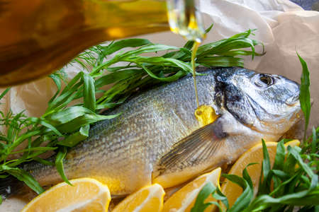 Fresh sea bream with lemon and herbs tarragon and dill, Chef pours olive oil fish before baking Stok Fotoğraf
