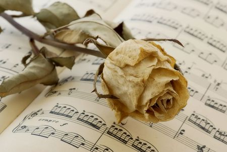 jazz time: Music book with a dried rose