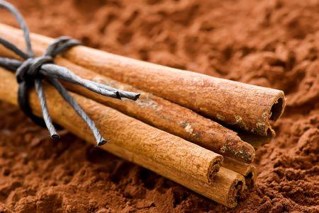 cinnamon: Cinnamon sticks with Cocoa Powder Stock Photo