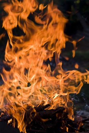 Campfire Stock Photo - 5669074