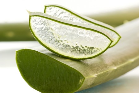 Aloe Leaf and Aloe Slice Stock Photo - 7725349
