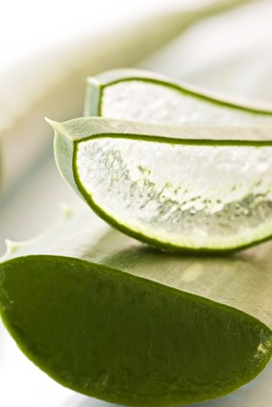 truncated: Aloe Leaf and Aloe Slice