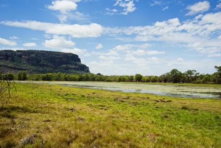 Billabong at Northern Territory, Australia photo