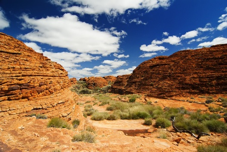 Outback Landscape photo