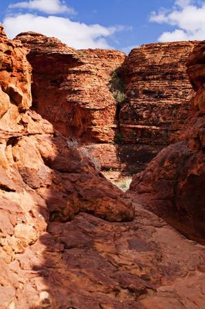 Outback Landscape photo