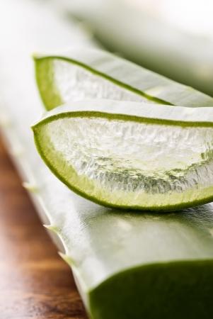Aloe Leaf and Aloe Slice Stock Photo - 8487234