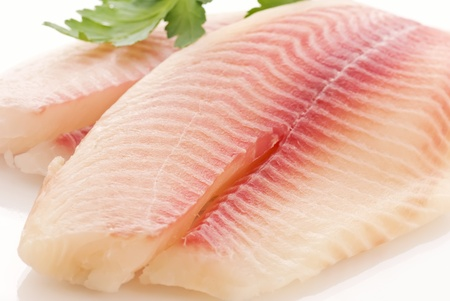 raw fish: Tilapiini Fillet Stock Photo