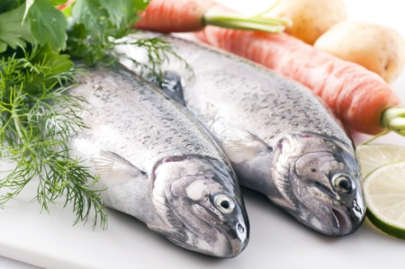Rainbow Trout Stock Photo - 9797008