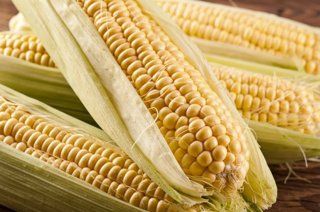 zea: sweet corn Stock Photo